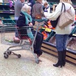 SHOPPING CART SEAT NOT JUST FOR KIDS